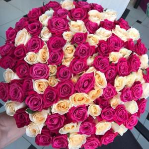 Букет 101 роза кремовая. и розовая с оформлением R1250