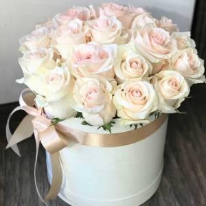 Коробка 19 нежных роз с оформлением R1210