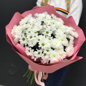 Букет 15 веток белой ромашковой хризантемы R1125